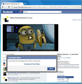 facebook-video-downloader_thumb