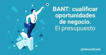 BANT: cualificar oportunidades de negocio. El presupuesto [+Vídeo]