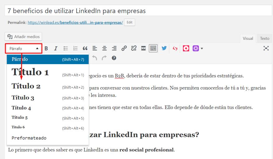 subtitulos post wordpress