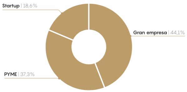 Distribucion de proyectos segun tamaño de empresa