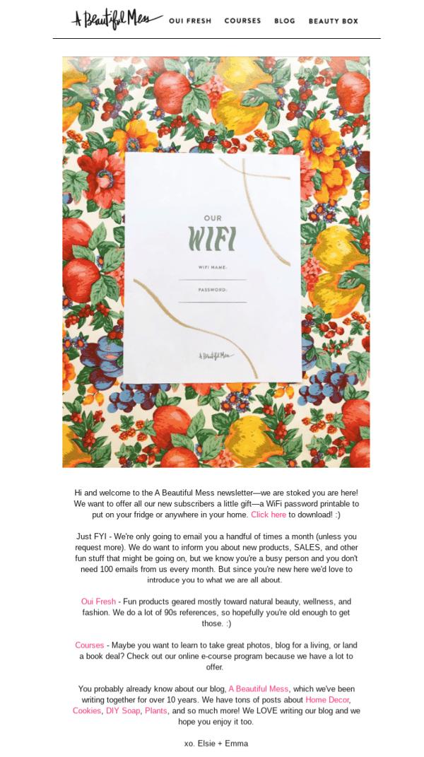 Email-Bienvenida-A beautiful mess - ok