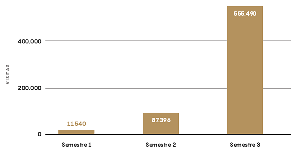 analisis semestre evolucion visitas sector salud b2b