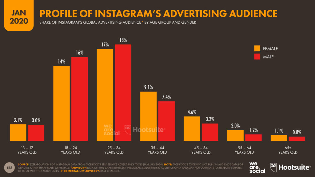 profile of instagrams audience
