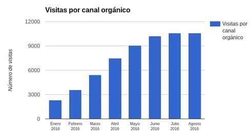 visitas_orgnicas-1.png